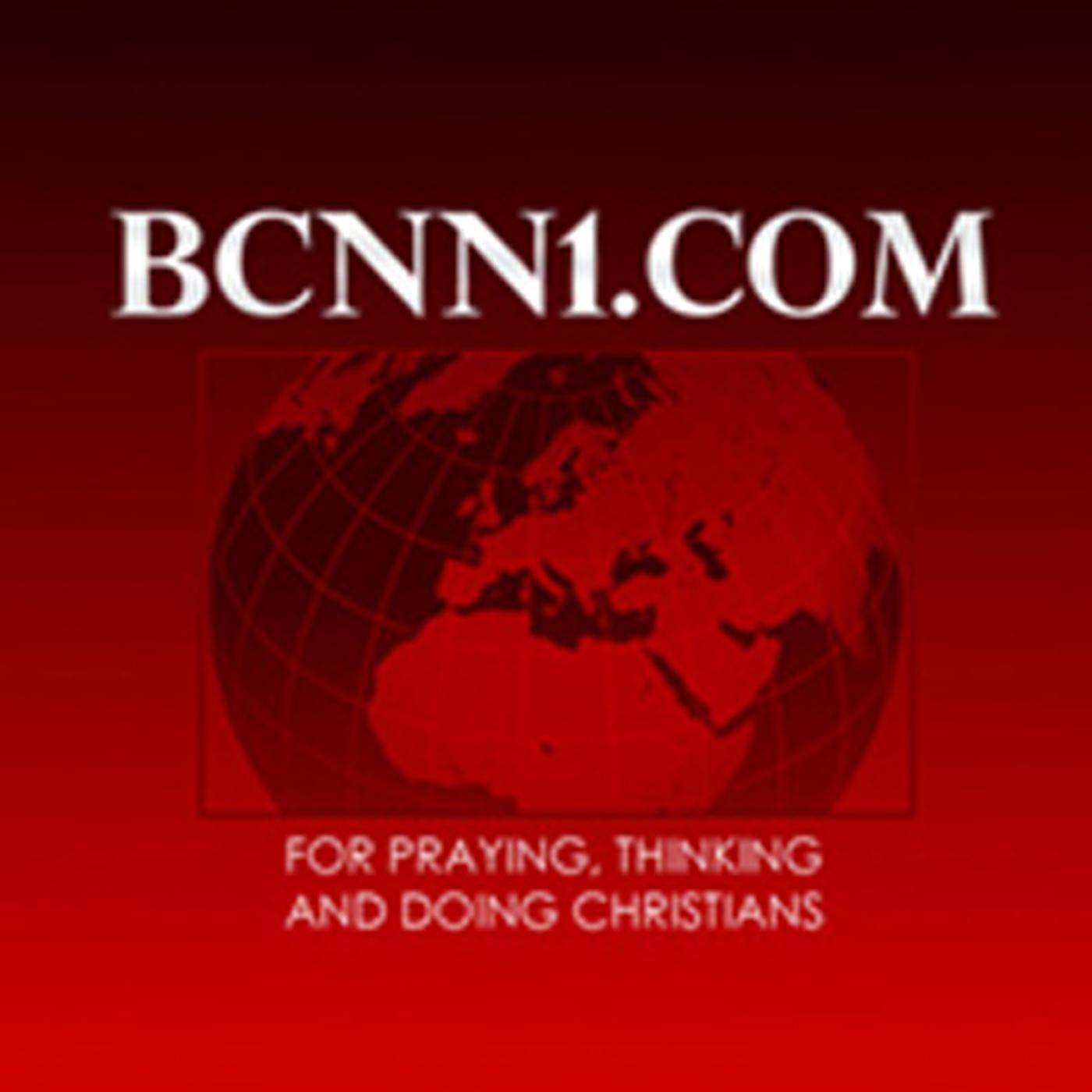 bcnn1.jpg